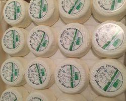 Fromagerie du Carré d'Or - Nice - Nos produits - Les Fromages de chèvre bio de Catherine Bonifassi